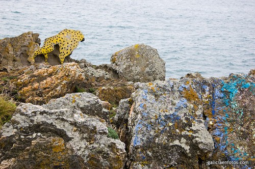 Leopardo en la roca I