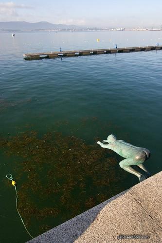 Raquero al agua