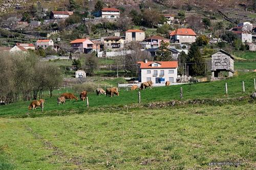 Galicia Rural