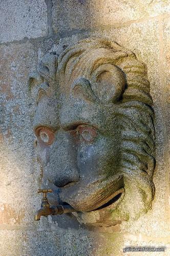 León y grifo