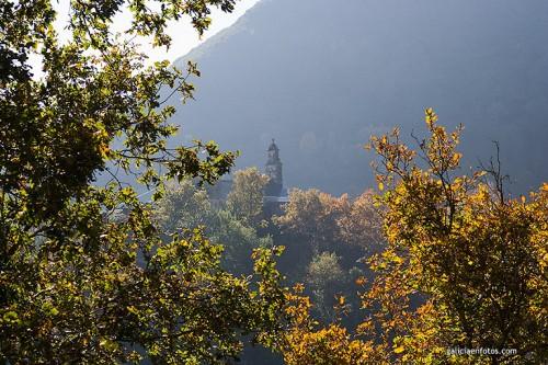 Iglesia en el bosque