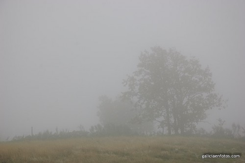 Sol y nubes según Meteogalicia